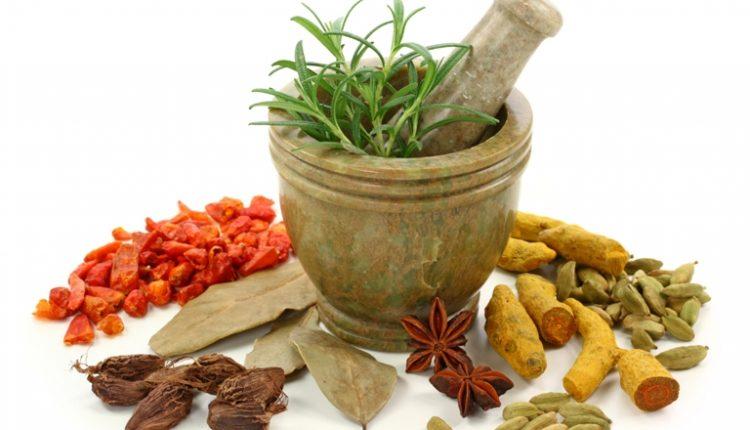 Các thành phần trong phương thuốc y học cổ truyền