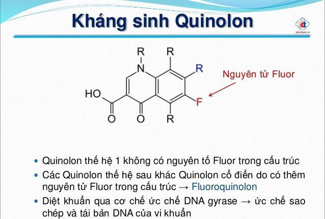 khang_sinh_quinolon