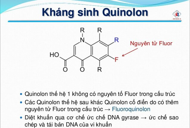 Kháng sinh Quinolon
