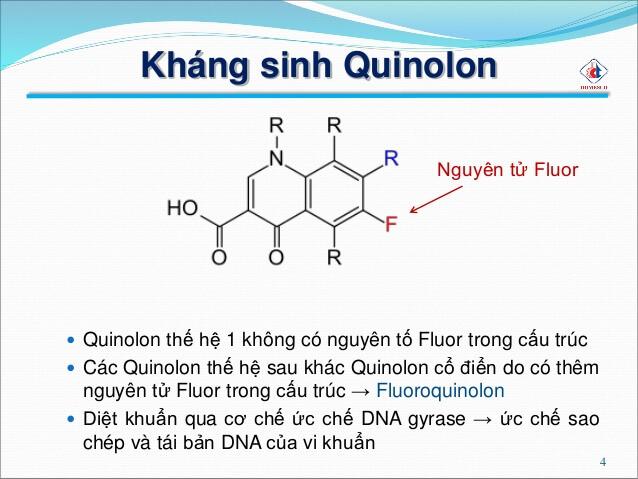 Cấu trúc hóa học của họ quinolon