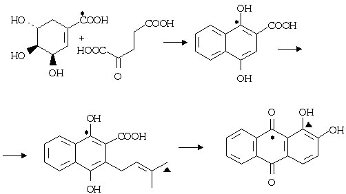 anthranoid