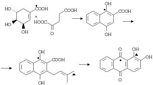 Tác dụng và công dụng của hợp chất anthranoid.
