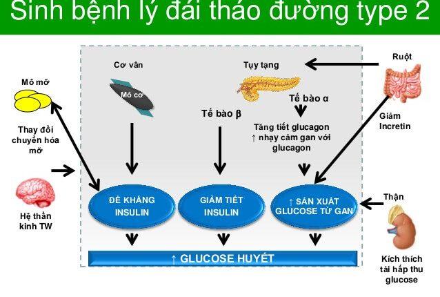 benh_tieu_duong