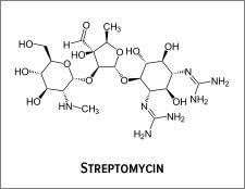 cong_thuc_hoa_hoc_cua_khang_sinh_streptomycin