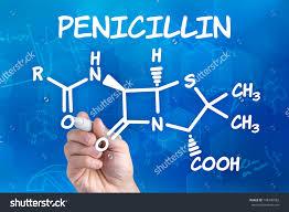 penicillin M và ampicillin